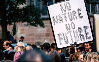 Mit Klick auf dieses Bild einer Klima-Demonstration gelangen Sie zum Interview mit Lucia Parbel