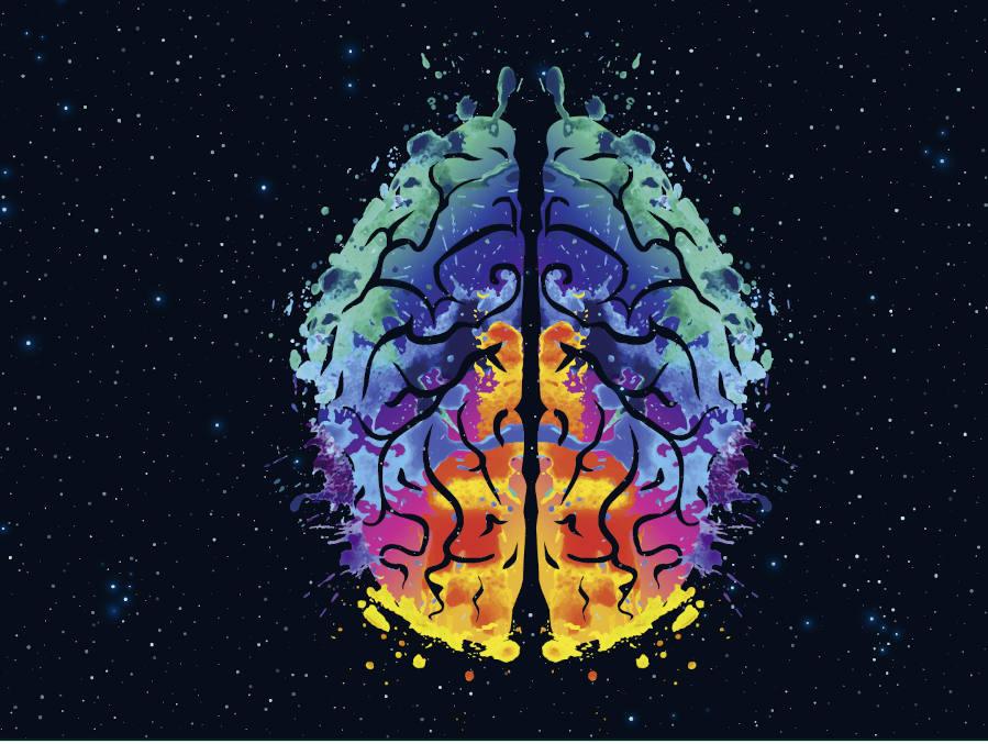 Keyvisual eines menschlichen Gehirns.